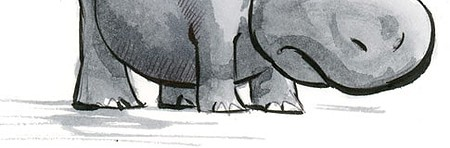 hippopotame coloriage