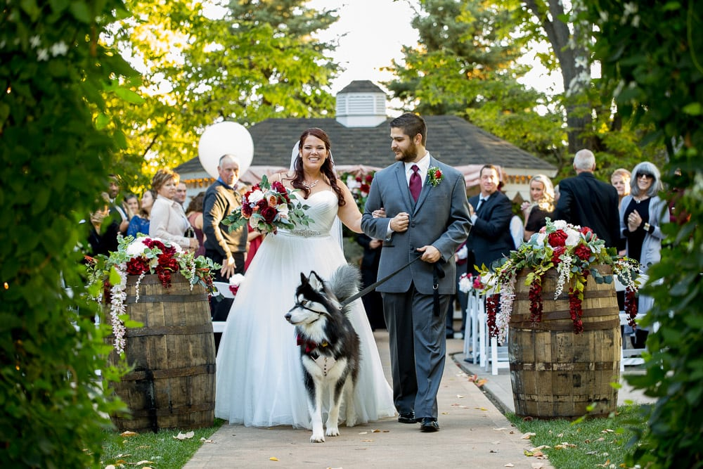 A bride and Groom laugh and walk down the aisle with their dog after the ceremony of their Tapestry House wedding in Fort Collins.