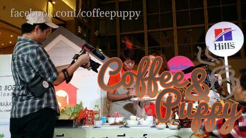 Coffee-Puppy-Give-A-Chance-9