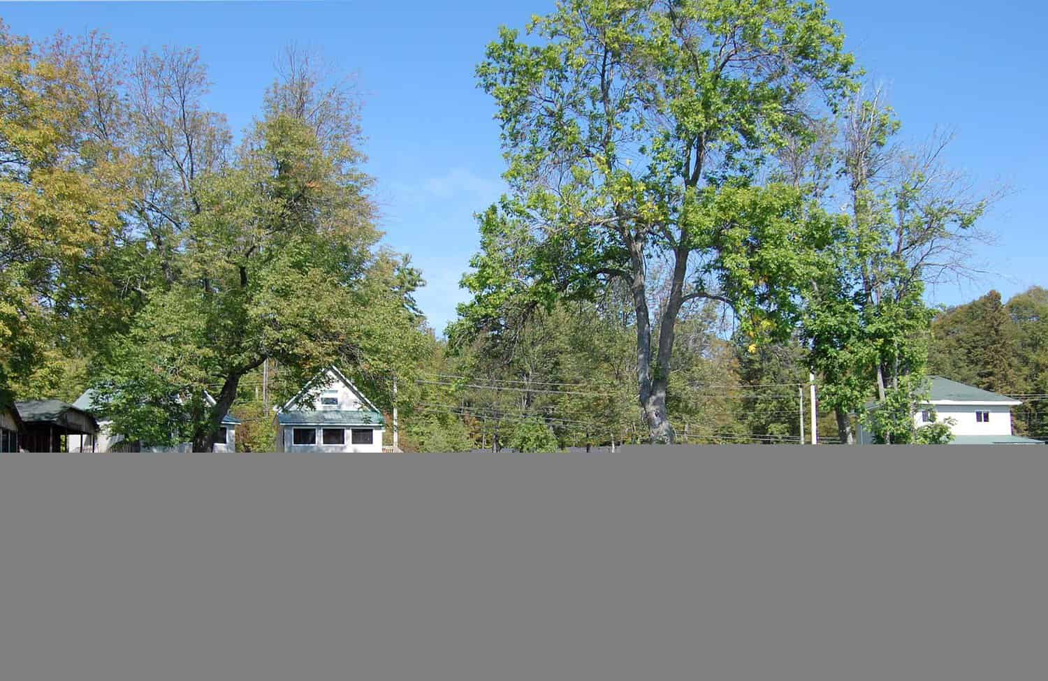 View from the lake of Jocko's Beach Resort & Motel in summer