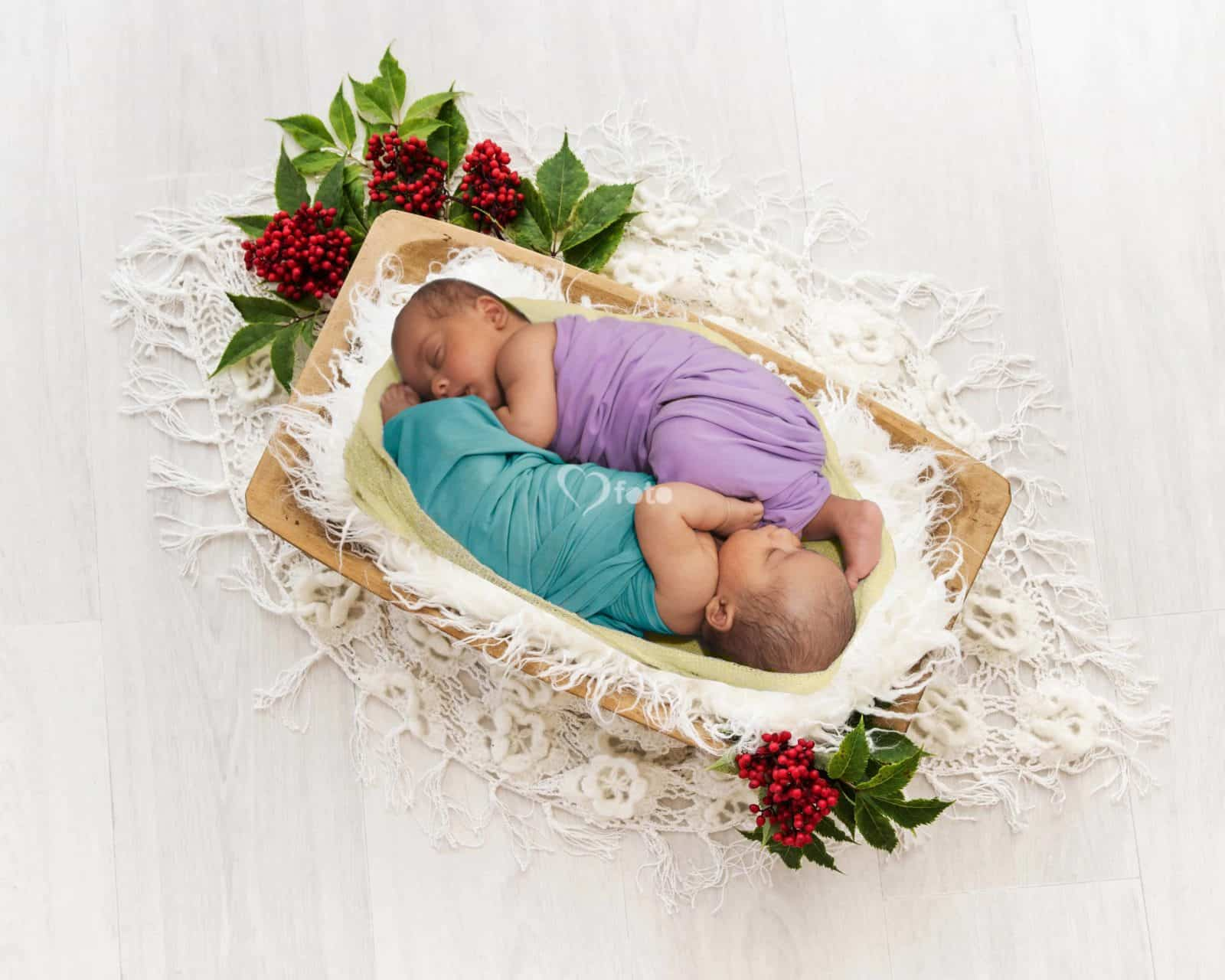 Portfolio-Newborn